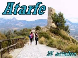 Torreón de Albolote y arroz en Atarfe