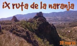 IX Ruta de la naranja.Día del senderismo Valle de Lecrín